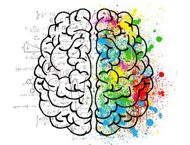 Мозг и нервная система