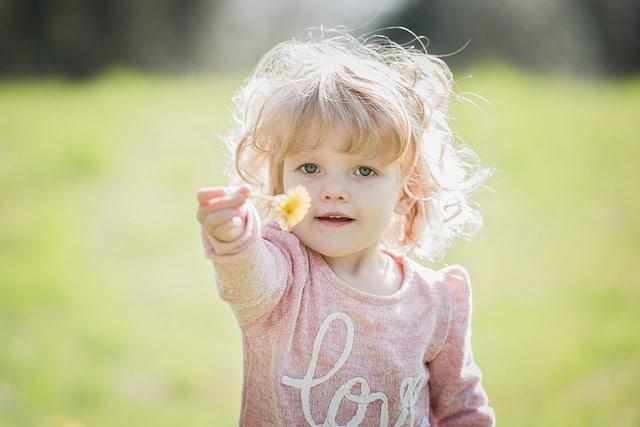 Развитие малыша в 2-3 года (2)