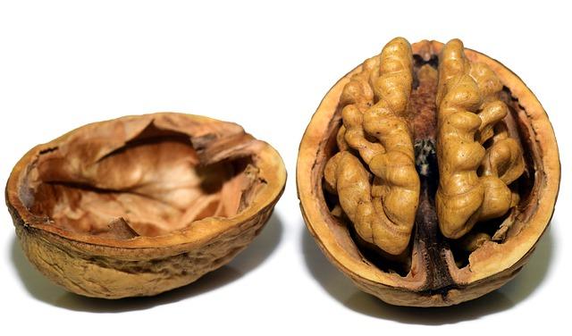 Здоровый мозг (2)